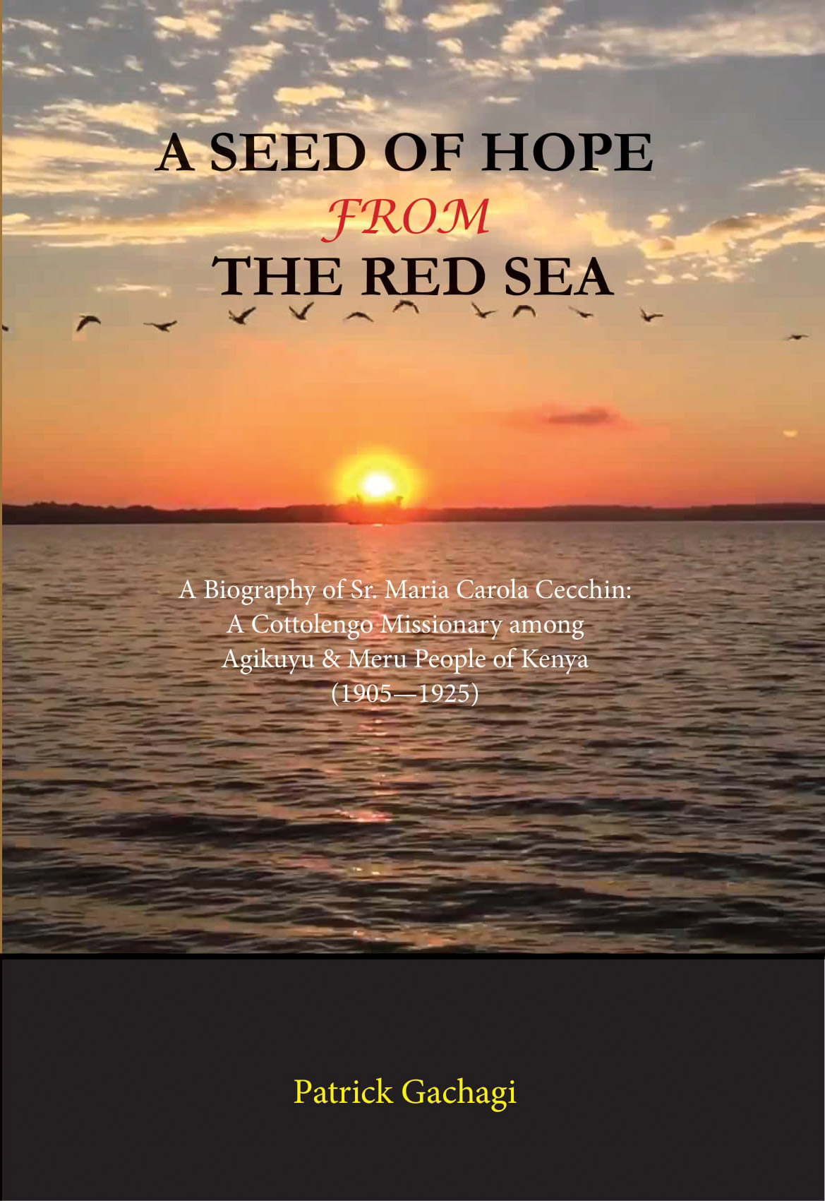 A seed of hope from the red sea Image